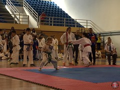 stefanou_15_5_2016_knockdown_39