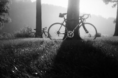 Wilderness Road Ride 2016 (Marm O. Set) Tags: trees blackandwhite tree film monochrome grass bike bicycle fog analog 35mm canon cycling virginia moody kodak tmax rangefinder olympus xa2 35mmfilm analogue olympusxa2 tmax400 canoscan atmospheric filmscan kodaktmax kodaktmaxdeveloper 35mmblackandwhite tmaxdeveloper 9000f canoscan9000f canoscan9000 9000fmarkii canoscan9000fmarkii wildernessroadride