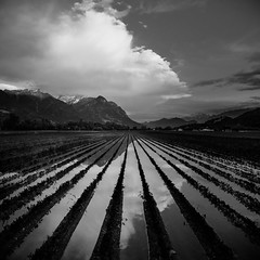 The ChiLD is Today - the ReflectiON tomoRRow (marco soraperra) Tags: sunset sky white reflection texture nature water field lines night clouds landscape nikon noir sonnenuntergang noiretblanc d himmel dmmerung landschaft blanc blackand 750 linien textur flickrunitedaward