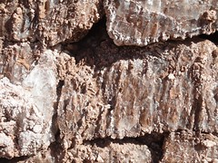 Close-up of salt in rocks (virharding) Tags: chile sanpedrodeatacama atacamadesert