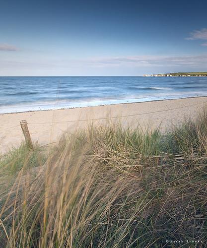 Coastal Fringe