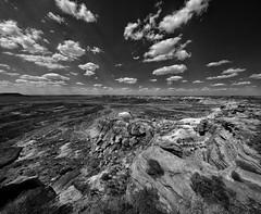 Jasper Bridge overlook. (isaacullah) Tags: light arizona panorama monochrome landscape desert wide nexus googlecamera
