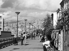 Caminos2 (Natyfotografa) Tags: love path caminos amistad blanco y negro monocromtico aire libre