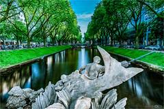 K (D.A. Lichtbilder) Tags: city trees reflection green nature water germany deutschland nikon wasser natur stadt d750 nrw grn fx dsseldorf bume baum nordrheinwestfalen knigsallee reflektionen 2016 japantag
