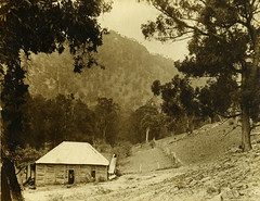 Dyson's Hut, Cox's River (Blue Mountains Local Studies) Tags: megalong