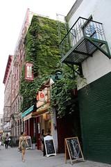 East 9th Street (ShellyS) Tags: nyc newyorkcity manhattan buildings streets ivy eastvillage