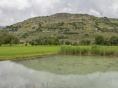 2016-06-05 GolfSion 077-HDR (PetterKien) Tags: switzerland suisse wallis sion ch valais golfclub