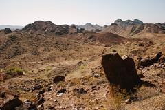 5R6K2844 (ATeshima) Tags: arizona nature havasu
