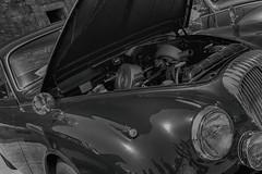 Jag (LeBlanc_Nigel) Tags: classic lights engine grill jag