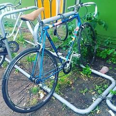 #berlincycles #follow #bike #berlin #fixie #rennrad #street #cycling #bicycle #fixedgear #velo #race #love #bicyclist (BERLIN CYCLES) Tags: berlin hipster fixedgear fixies speedbikes berlincycles