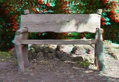 Bankje Arboretum Trompenburg Rotterdam 3D (wim hoppenbrouwers) Tags: 3d rotterdam arboretum anaglyph stereo trompenburg bankje redcyan