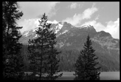 2016-07-02-0087a (Cosmic Ray's) Tags: blackandwhite lake mountains film 35mm olympus 35mmfilm vintagecamera wyoming tetons nationalparks jacksonhole grandtetonnationalpark usnationalparks phelpslake jacksonwy omsystem