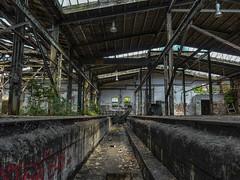 RAW G (93) (wilhelmthomas58) Tags: abandoned raw ddr lostplaces reichsbahn fz150