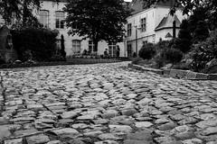 Cobbledy gook (John fae Fife) Tags: blackandwhite bw monochrome garden belgium belgique noiretblanc nb cobbles mons
