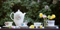 Tea Party (Photos By Michi) Tags: pink flowers stilllife flower nature rose yellow garden tea outdoor naturallight peony sugar sugarcube teapot teacup afternoontea arrangement teaparty