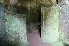 Necropoli di Orvieto_04