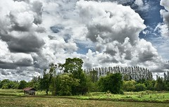 The clouds saga continues.... (Tungmay (Keep Calm and Take Photos)) Tags: sky clouds landscape thailand