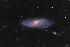 M106 - 10 hrs 25 m Total Exposure (Steve's Astrophotography) Tags: spiral galaxy canes m106 venatici at8rc