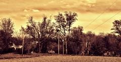 Slipping into Oblivion... (BillsExplorations) Tags: abandoned farmhouse barn rural vintage illinois corn rust ruins antique decay farm destruction country farming retro agriculture discarded hazardous abandonment ruraldecay shuttered oncewashome illinoisabandonment