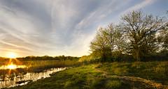 A swampy sunset (ratulm) Tags: sunset clouds spring wideangle swamp sunburst forestpreserve oakhurst eola mccoy sidelit frontlit