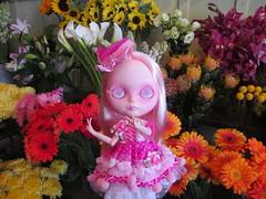 BPC #80 Flower Power