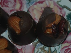 Dark Chocolate Healthy Munchies (teresatrimm) Tags: almond almonds silicon driedfruit driedcranberries darkchocolate glutenfree dairyfree siliconicetray