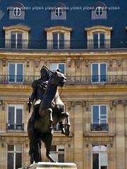 equestrian statue (plitch) Tags: paris france statue bronze geotagged place des equestrian victoires plitch plitchphotostream geo:lat=4886581037308765 geo:lon=2340955802377266