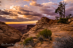 Terra Incognita (Chase Schiefer) Tags: park southwest west art abbey sunrise landscape ed photography utah nikon heaven arch fine edward national canyonlands stunning geology nationalparks epic mesa photog togs d600 edwardabbey landscapephotography chaseschieferphotography