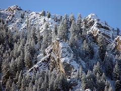 WXG 0034 (ndpa / s. lundeen, archivist) Tags: 2002 winter test mountain snow color digital colorado sony february aspen sonycybershot snowcoveredtrees dewolf shadowmountain nickdewolf photographbynickdewolf testphotograph