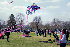 Kiteday-5 (visionsrecalled) Tags: family sunshine kids fun washingtondc weekend kites blueskies visionsrecalled catherinesiler