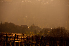 IMG_5079 (Lebemitgott) Tags: wandern badenwrttemberg sddeutschland weinberge beutelsbach waiblingen endersbach weinstadt remsmurrkreis schnait