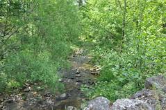 Rivière - Saint-Jean-du-Gard