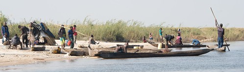 Canoes come ashore at a market on the floodplain, Zambia. Photo by Patrick Dugan, 2012.