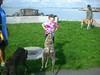 DeerIsland09-25-2011014