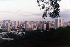 Honolulu (ShelbiNikol) Tags: city film analog 35mm canon hawaii cityscape iso400 35mmfilm fujifilm honolulu canonae1 filmgrain filmphotography vogueitalia honoluluhawaii fujifilm400 fujifilmiso400 hawaiilandscape hawaiianlandscape photovogue