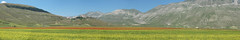 Castelluccio's plain (filippo rome) Tags: italy mountains italia montagna umbria castelluccio montevettore