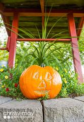 Pumpkin Face (chrissymay) Tags: autumn mountains fall halloween gourds pumpkin washington october jackolantern pumpkins washingtonstate octoberfest leavenworth bavarian pumpkinface