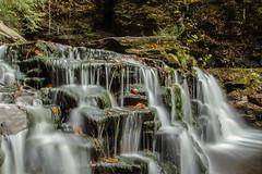 "Cayuga Falls (""Bert"" Brady) Tags: park nature water walking outdoors waterfall hiking trails rickettsglenstatepark cayugafalls"
