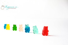 October 24 : Gummy Bear Parade (RachelBrandtPhotography) Tags: bear colors colorful candy gummy gummybear