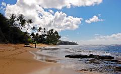 The Shore of Infinity (jcc55883) Tags: ocean sky beach clouds hawaii nikon oahu shoreline pacificocean shore blackpoint kahala yabbadabbadoo d40 kaalawaibeach nikond40 diamondheadroad