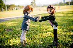 P1000697 () Tags: doll maria dd mdd dollfiedream ddh01  dg25mm