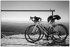 Provence #6 (stuep jr. 2) Tags: blackandwhite bw holiday france bicycle landscape blackwhite montventoux silverefexpro2 sigmaa35mm14dg