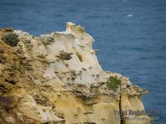 Great Ocean Road (__db_) Tags: australien 20132014