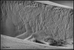 Slip Face 0552 (maguire33@verizon.net) Tags: california unitedstates dunes brawley sanddunes glamis imperialsanddunes slipface algodonesduneswilderness