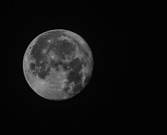 FULL COLD MOON or LONG NIGHTS MOON (Primo Iglesias) Tags: moon fullmoon gotham moonscapes longnightsmoon coldmoon fullmoonmoon december2013fullmoon fullcoldmoonlongnightsmoondecember2013fullmoonprimoiglesiasprimo