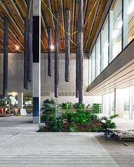 Perez Pre Planted (ken mccown) Tags: architecture florida miami modernism herzogdemeuron perezartmuseummiami
