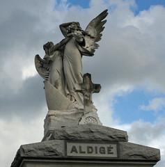 Aldige angels