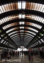 Zurich Hauptbahnhof - Zurich Main Train Station - Zurich (Polycarpio) Tags: station train schweiz switzerland europa europe suisse suiza euro main zurich hauptbahnhof svizzera poly gallardo svizra schweizerische fotosalida polycarpio europephotos fotosdeeuropa jmgallardo confederacinsuiza juanmanuelgallardo suizaschweizerische
