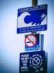 Tsunami Hazard Zone (alexthegalaxycat) Tags: california santa man west sign warning coast pier santamonica stickman tsunami monica figure stickfigure stick westcoast peril uploaded:by=flickrmobile superfadefilter flickriosapp:filter=superfade