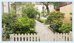 Paris, jardin du Muse de Montmartre (jardins Renoir)   2013-08 (Brigitte Rieser) Tags: paris france garden square innenhof jardin montmartre musee garten hof hofgarten museemontmartre gartenhof jardinsrenoir